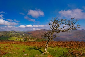 Dartmoor Devon Landscape Photography Holiday Workshop Tour